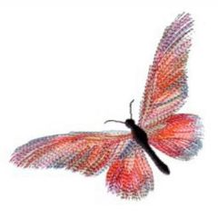 variegated floss projects - machine embroidery butterfly