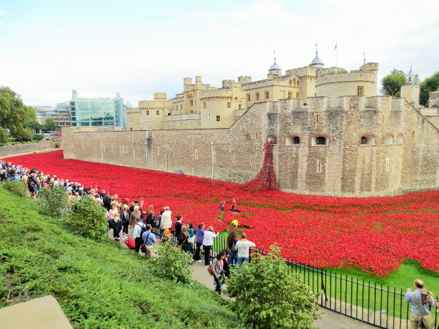 gypsy ways update 9 - poppies at the tower of london